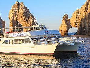 Cabo Mar Catamaran Tour