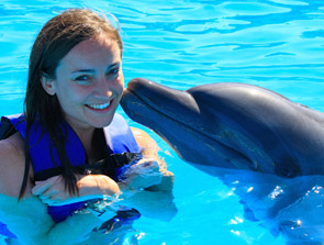 Cabo Dolphins