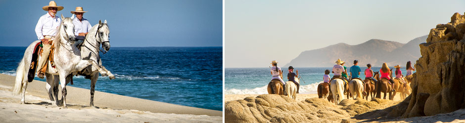 Horseback Riding in Los Cabos Cuadra San Francisco