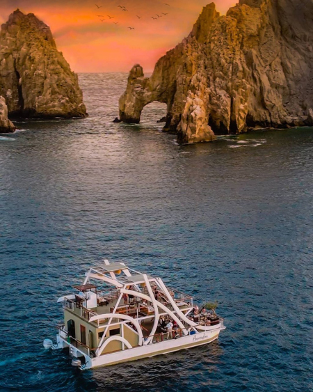 Gourmet Sunset Cruise Dining Animalon in Los Cabos