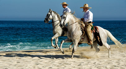 horseback riding in Los Cabos Mexico