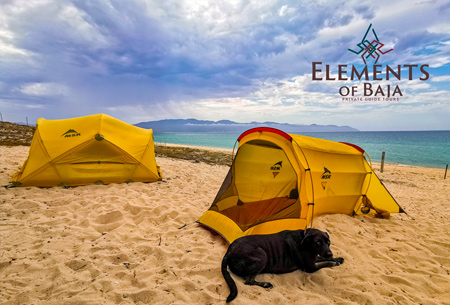 Private Eco Tours in Los Cabos Elements of Baja