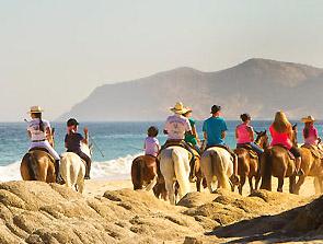 Cuadra San Francisco Horseback Rides