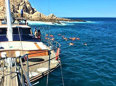Cabo Specials