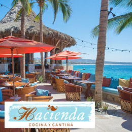 Restaurants In Cabo San Lucas Mexico Dining Guide To Los