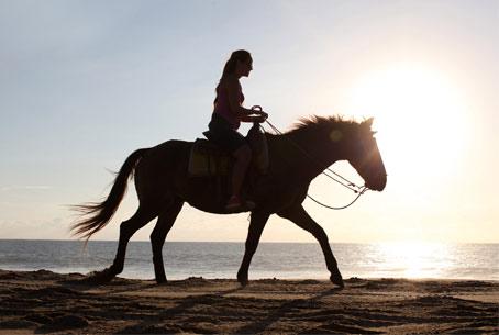 horeseback riding in Cabo