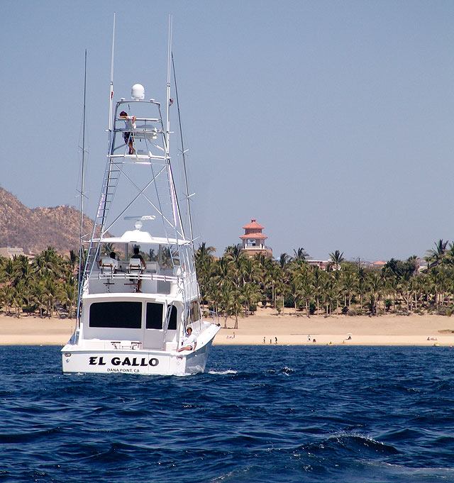 Bisbee Fishing Tournament Team Los Cabos Mexico