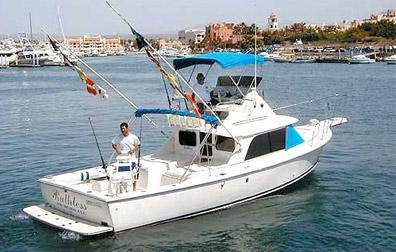 Pisces Bertram Sport Fisher