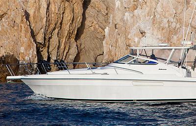 Pisces Mediterranean 'Speedwell'