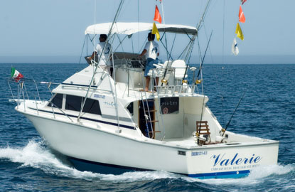 Pisces bertram 39 valerie 39 los cabos mexico for Pisces fishing cabo